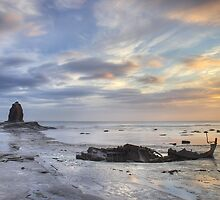 Shipwrecked at Black Nab by MartinWilliams