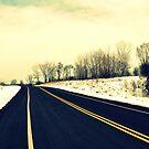 Freedom Ahead by Brian Gaynor