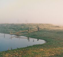 Misty Dam at Kerula © Albert by Vicki Ferrari