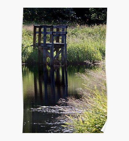 Old Dock Among Grass Poster