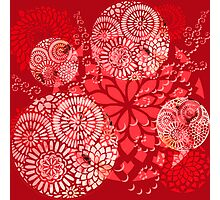 The Red Garden Photographic Print