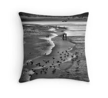 Evolution of the species  Throw Pillow