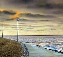 Dueling Lampposts by Brian Gaynor