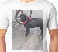 NOLA dog Unisex T-Shirt