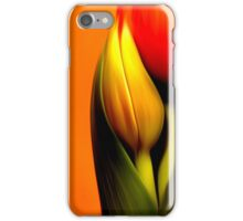 Glass Back-Splash-Interior deign series iPhone Case/Skin