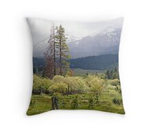 """""""Hope Valley Storm"""" Throw Pillow"""