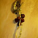 Mask and Roses by eyeswideshut23