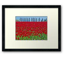 Spring in Skagit Valley Framed Print