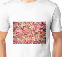 Sundew plant Unisex T-Shirt