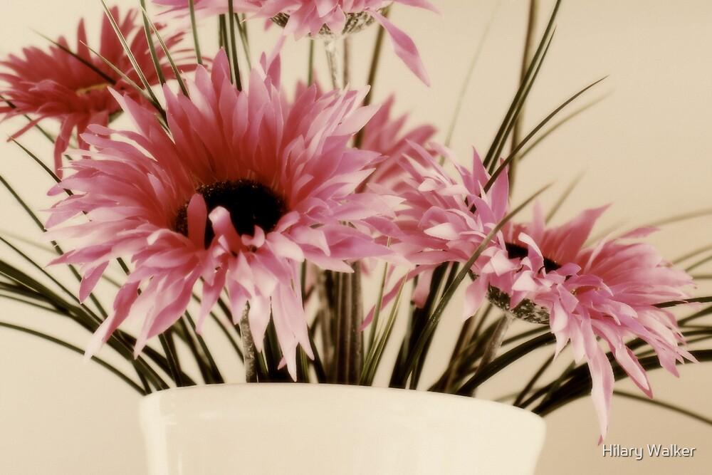 Pink Summer by Hilary Walker