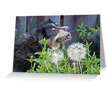 Buddy says pappa Denny, Quick make two wishes, I'm going to blow! Greeting Card