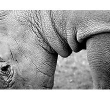 The wrinkle is beautiful! Photographic Print