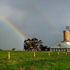 Silos at Warracknabeal by Darren Stones
