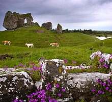 Castle at Clonmacnoise by Deb Snelson