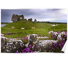 Castle at Clonmacnoise Poster