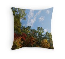 Autumn on the Blue Ridge Parkway Throw Pillow