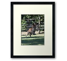 It Comes Around Again Framed Print
