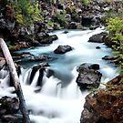 Rogue Gorge by Stephen  Van Tuyl
