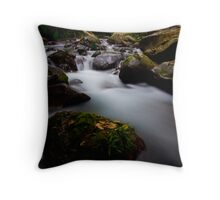 Flowing Tranquility  Throw Pillow