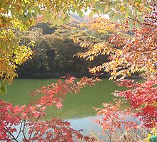 Autumn in South Korea by namsan