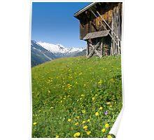 Alpine Barn Poster