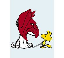 Battle Snoopy and He-Bird Photographic Print
