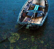 Derelict Rowboat - Queenscliffe, Australia by Rick Box