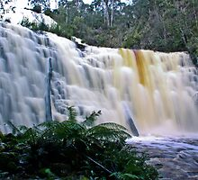 Dipp Falls Tasmania by Hilly