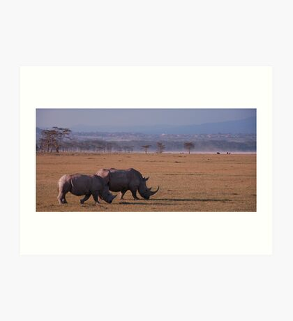 White Rhinos Art Print