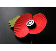 Poppy Appeal Photographic Print