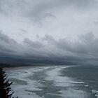 Coastline by Sandra Pearson