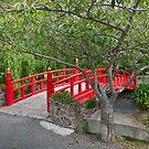 Chinese Garden by Werner Padarin