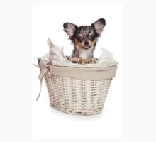 Chihuahua puppy in a basket Kids Clothes