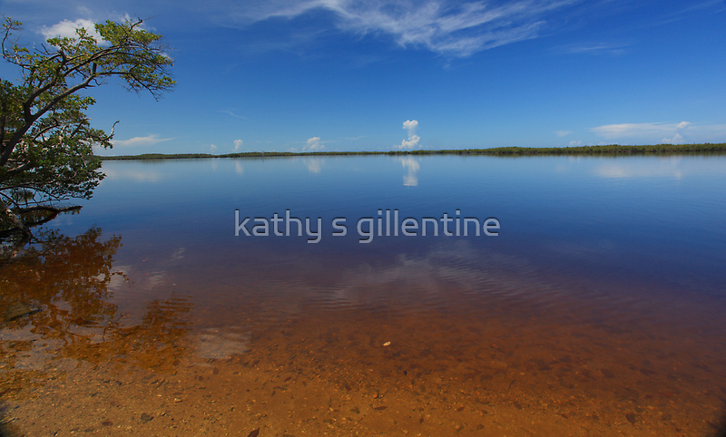 Chokoloskee Bay by kathy s gillentine
