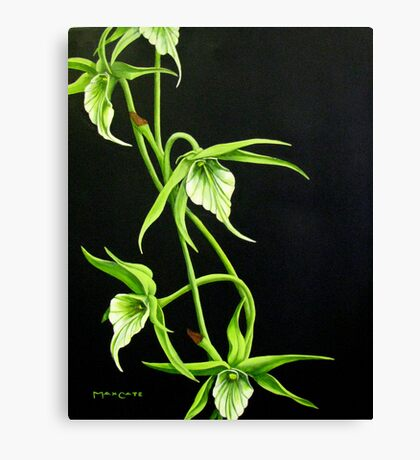 Night Orchids Canvas Print