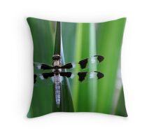 Twelve-spotted Skimmer -II- Throw Pillow