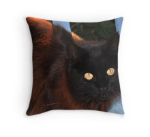Golden eyes Throw Pillow