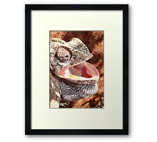 The Laughing Chameleon Framed Print
