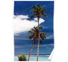 Two coconut trees Poster