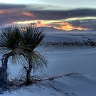 Sundown at White Sands by Terence Russell