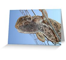 Chameleon Understudy Greeting Card