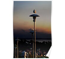 Gulls and Lamps Poster