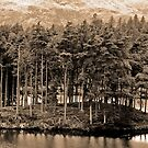 Tarn Hows by JMChown