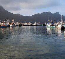 Hout Bay Fishing Boats Panorama by neonskye
