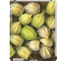 Physalis iPad Case/Skin