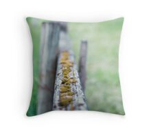 focal fencing Throw Pillow