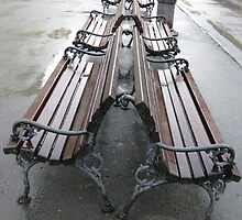 benches after rain by Rada