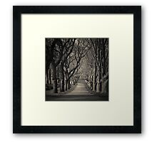 Tall Stand  Framed Print