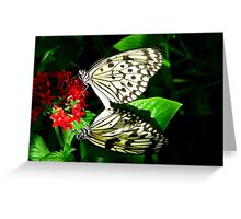 mirror imaged Greeting Card