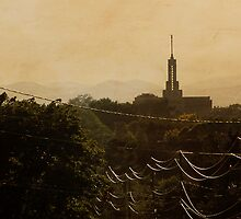 Mount Timpanogos Temple - Wires by Ryan Houston